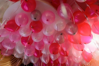 Bunch of pink balloons hangs under the white ceiling