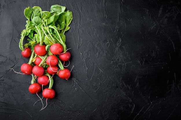 Букет из редиса. свежесобранный, пурпурный красочный редис. выращивание редиса. выращивание овощей. набор здоровой пищи, на черном камне