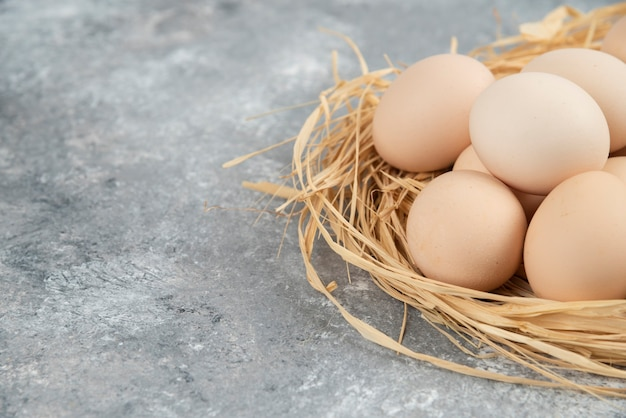 대리석 표면에 새 둥지와 원시 계란의 무리.