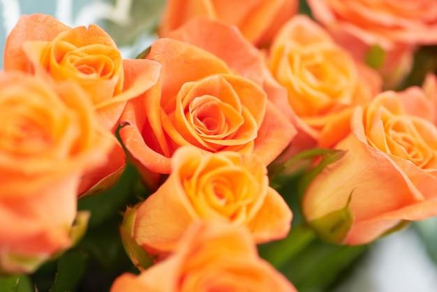 赤とオレンジの美しいバラの束