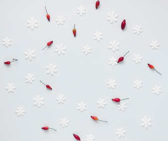 Bunch of red berries and fake snowflakes