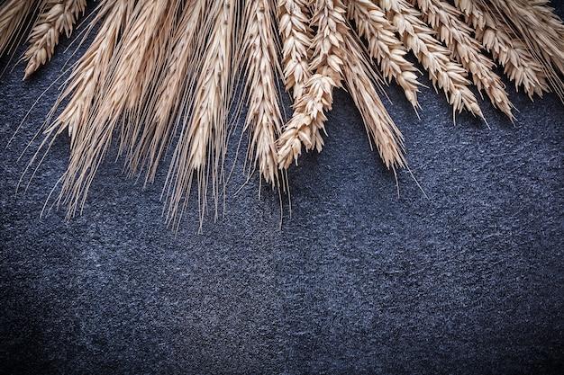 熟した小麦とライ麦の穂の束