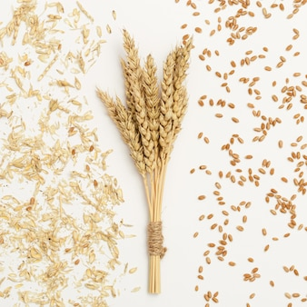 熟した小麦の穂の束がクローズアップし、白い背景の上の種子のチャフ創造的な秋の収穫