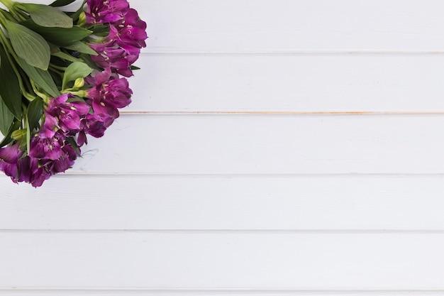 Букет из фиолетовых цветов на белом