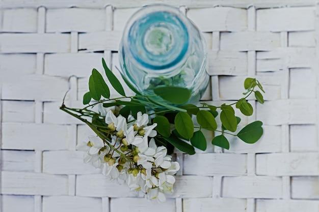 Букет из белых цветов акации возле бутылки медицины. сбор трав в сезон. ветви черной саранчи, robinia pseudoacacia, ложная акация. лекарственные средства из лекарственных растений.