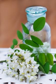 계절에 허브의 약 컬렉션의 병 근처 흰색 꽃 아카시아의 무리