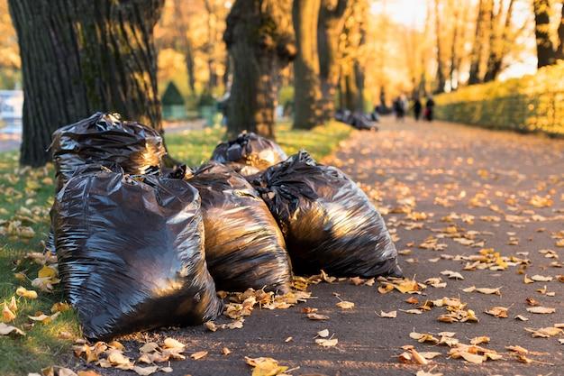 Куча засохших листьев, лежащих в черных мешках для мусора. черные мешки для мусора, наполненные опавшими листьями