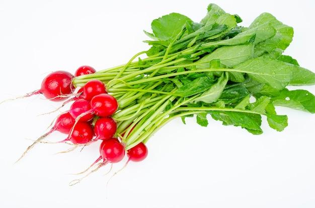흰색 배경에 분리된 녹색 잎이 있는 어린 붉은 무우, 다이어트 채식 메뉴. 스튜디오 사진.