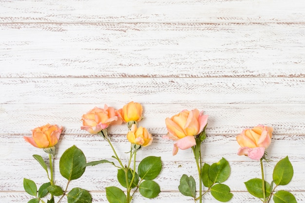 Bunch of orange roses on the table