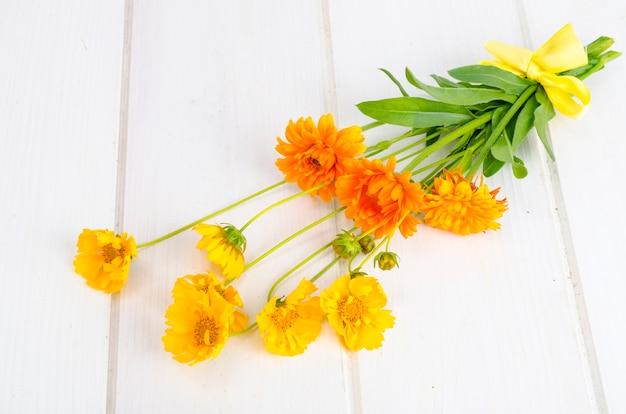 Bunch of orange wildflowers on white background