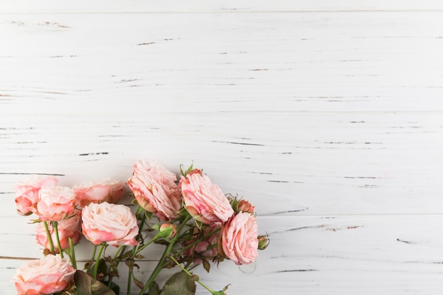 Bunch of pink roses on white wooden texture background