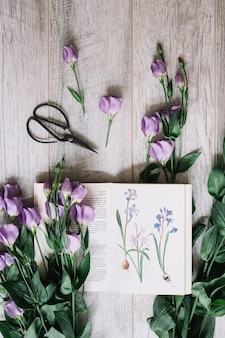 Bunch of purple flowers with open book and scissors on wooden backdrop
