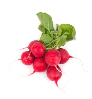 Bunch of radish isolated on white surface