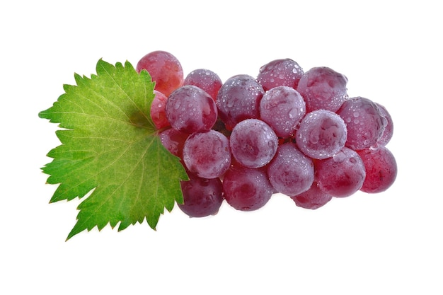 Bunch of red grapes with water drops with leaves, isolated on white background