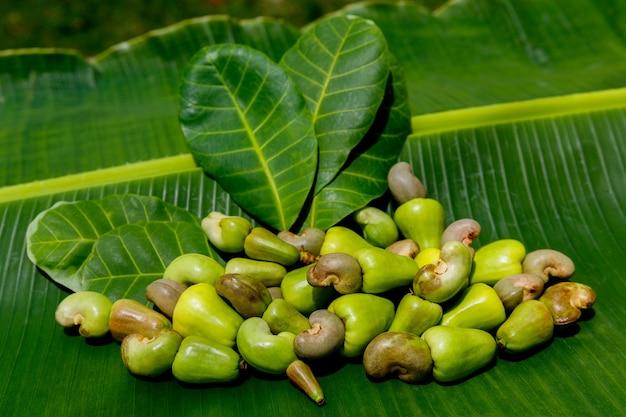 A bunch of ripe cashew nuts anacardium occidentale on a banana leaf