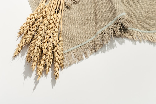 Bunch of ripe wheat ears close up isolated on white background sheaf of wheat ears
