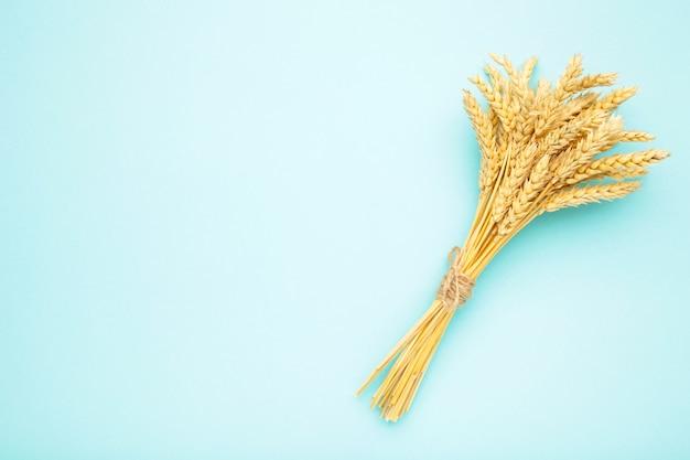 Куча колоски пшеницы на синем фоне