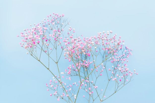 Bunch of tender pink floral twigs