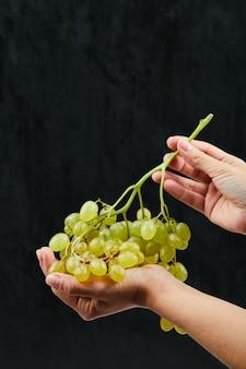 Un grappolo d'uva bianca in mano su sfondo nero. foto di alta qualità