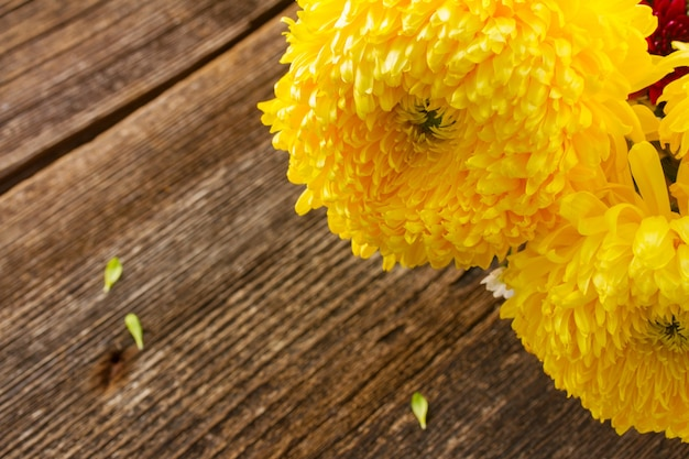 Bunch of yellow mum flowers close up on wooden table
