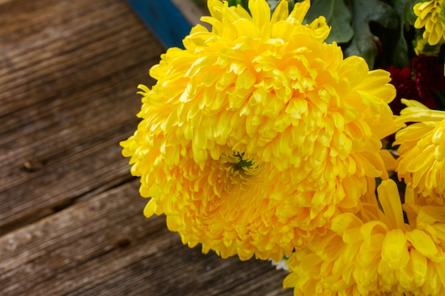 Bunch of yellow mum flowers on wooden table