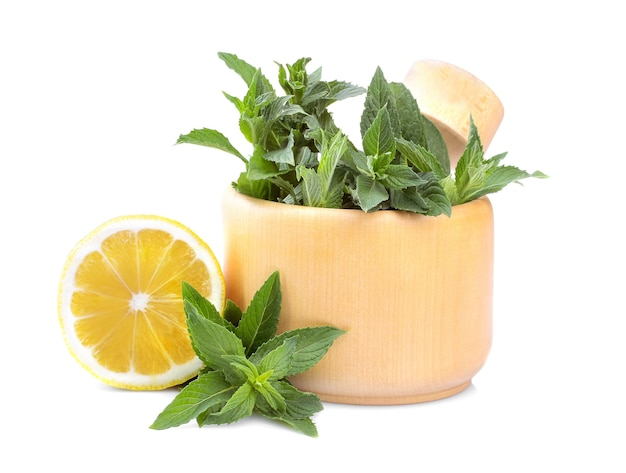 Bunches of fresh mint in a mortar with lemon. isolated