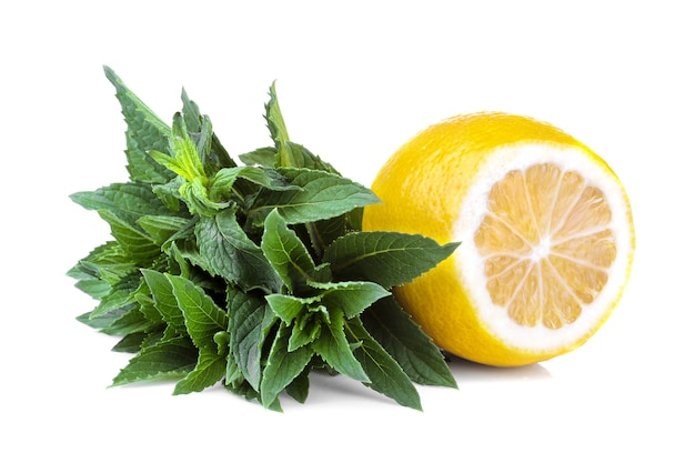 Bunches of fresh mint with lemon. isolated