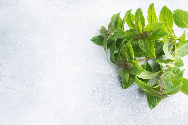 ミントとローズマリーの新鮮な小枝の束。