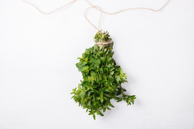 Bundle of fresh green herbs oregano