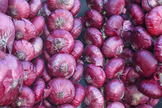 Bundles of red onions