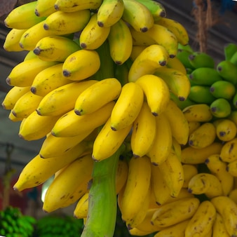 Bundles of yellow, ripe bananas.