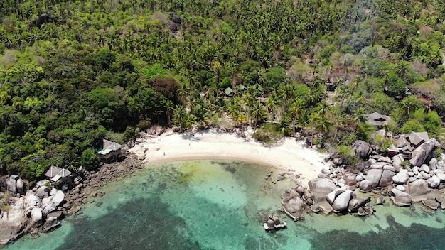 Бунгало и зеленые кокосовые пальмы на тропическом пляже. коттеджи на песчаном берегу курорта для дайвинга и сноркелинга на райском острове ко тао возле спокойного синего моря в солнечный день в таиланде. вид с дрона.