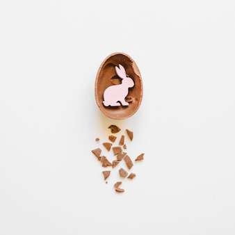 Bunny in chocolate egg