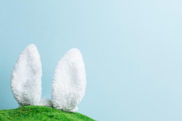 青い空の壁に向かって草が茂った緑の丘から突き出ているバニーウサギの耳。イースターホリデー。春のコンセプト。