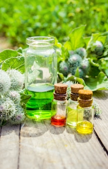 Burdock oil. medicinal plants. selective focus.