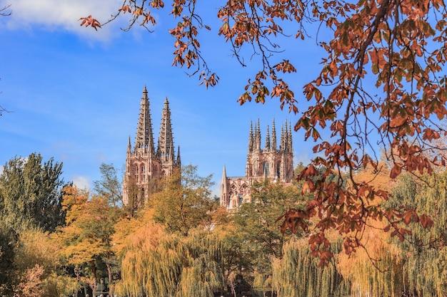 スペインの街の木々に囲まれたブルゴス大聖堂