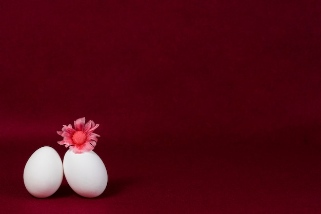 Burgundy background with two eggs and a flower