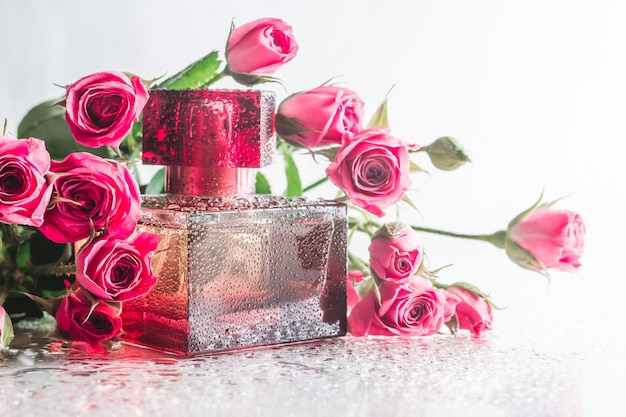 섬세한 분홍색 장미와 물방울이 있는 광택 있는 표면에 버건디 사각 향수병. 오 드 뚜왈렛, 복사 공간