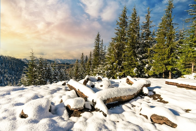 산에서 하이킹을 위해 묻힌 눈 덮인 사이트 i 밝고 차가운 태양