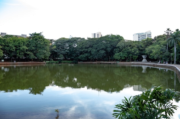 Buritis lake in the buritis forest in the city of goiania