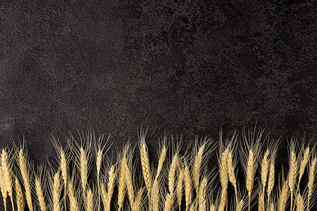 Burlap napkin on a dark structural background, top view. ears of wheat. copyspace. top view