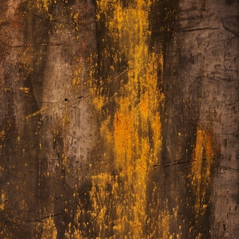 Burned wood texture with golden stains