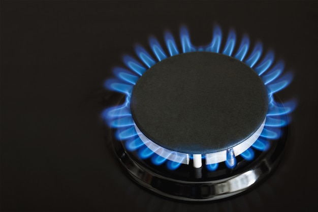 Burning blue gas on the dark stove. burner gas stove, concept of energy.
