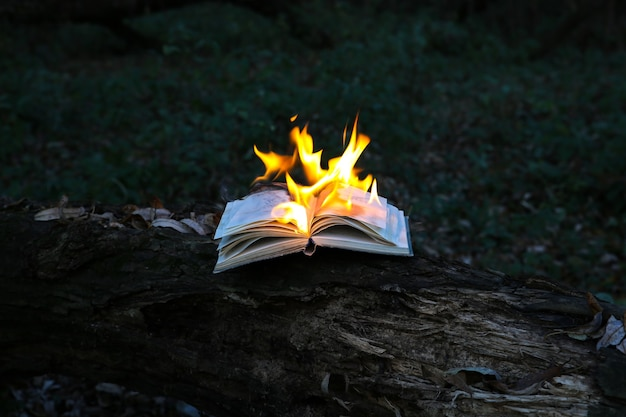 Burning book on fire outdoors. people don't like reading. intellectual problems.