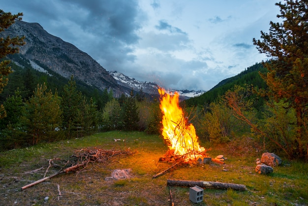 Burning camp fire into remote larch and pine tree woodland with dramatic sky at dusk