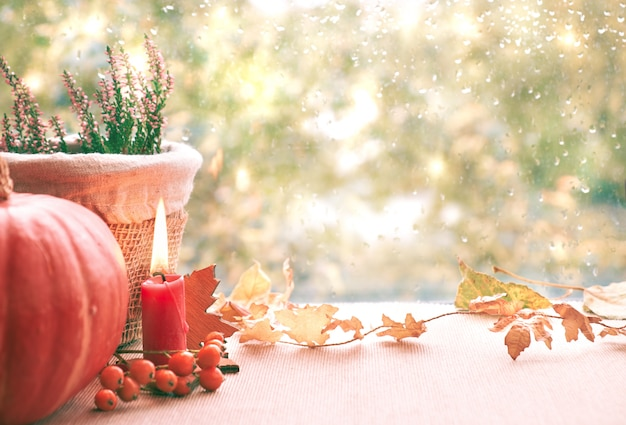 Burning candle, pumpkin, heather and fall decorations on a window board on a rainy day