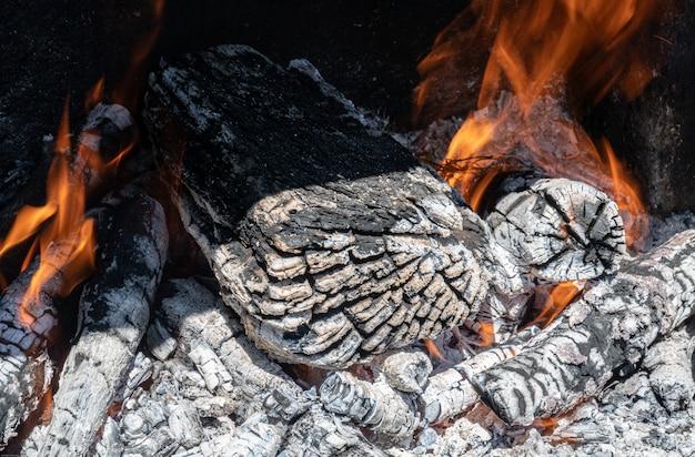 Burning charcoal, wood logs on furnace