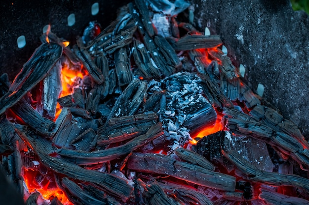 Burning coals. decaying charcoal. charcoal in the background.