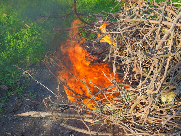 燃える火の炎