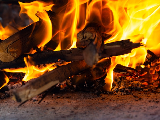 Burning firewood in bright bonfire